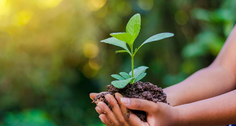 Υψηλή Ποιότητα & Σεβασμός στο Περιβάλλον - Ideal S.A. - Imatel